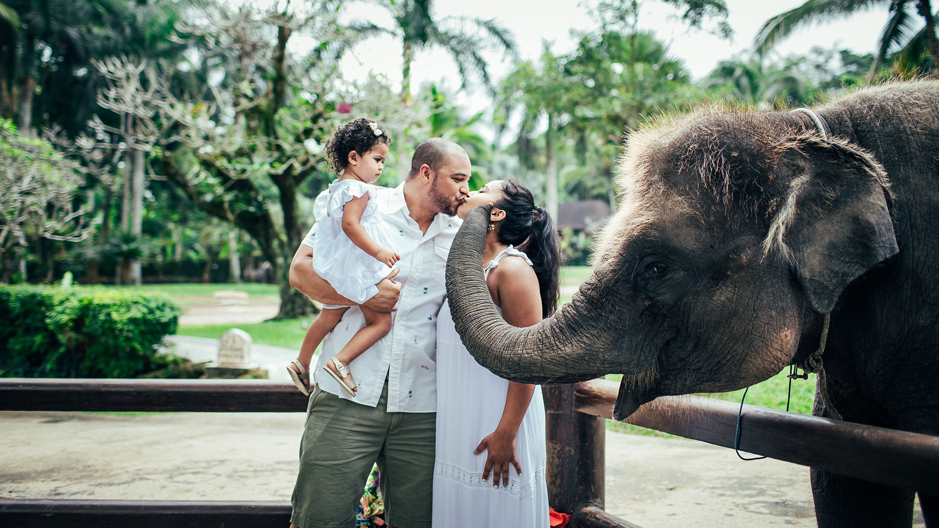 Angelica, her husband, and her 4 years old sweet daughter were on holiday in bali for 1 week. They wanted to have special memories with elephant...